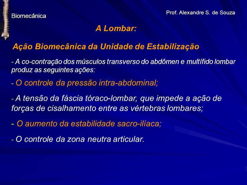 Ação Biomecânica da Unidade de Estabilização