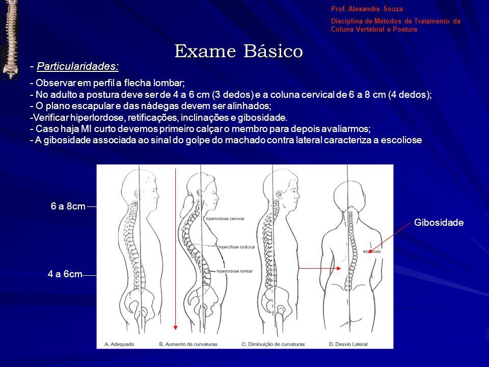 Exame Básico Particularidades: Observar em perfil a flecha lombar;