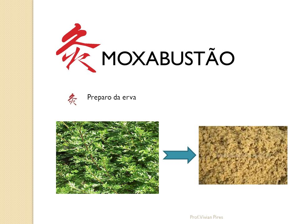 MOXABUSTÃO Preparo da erva Prof. Vivian Pires