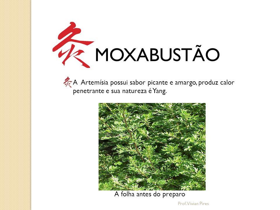 MOXABUSTÃO A Artemísia possui sabor picante e amargo, produz calor penetrante e sua natureza é Yang.