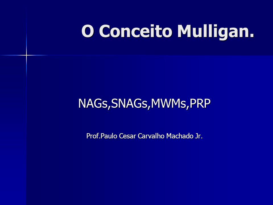 Prof.Paulo Cesar Carvalho Machado Jr.