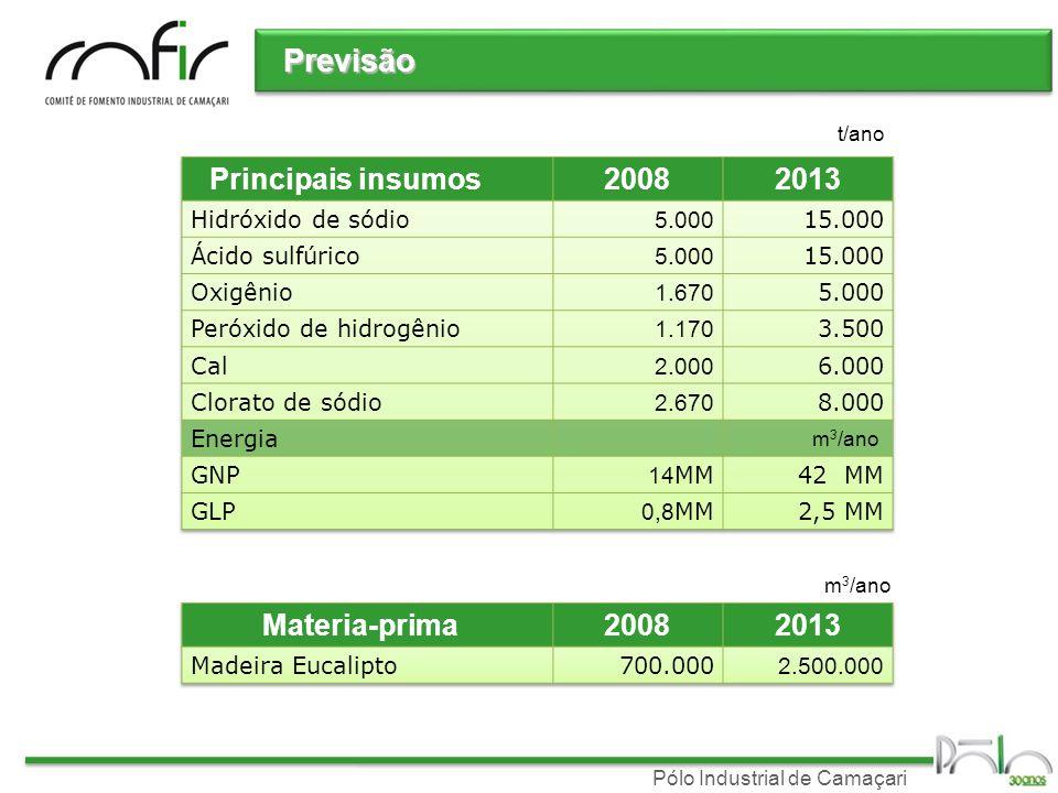 Previsão Principais insumos 2008 2013 Materia-prima 2008 2013