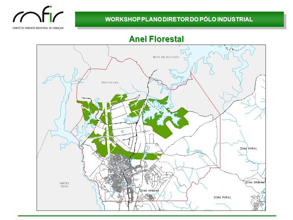 Anel Florestal