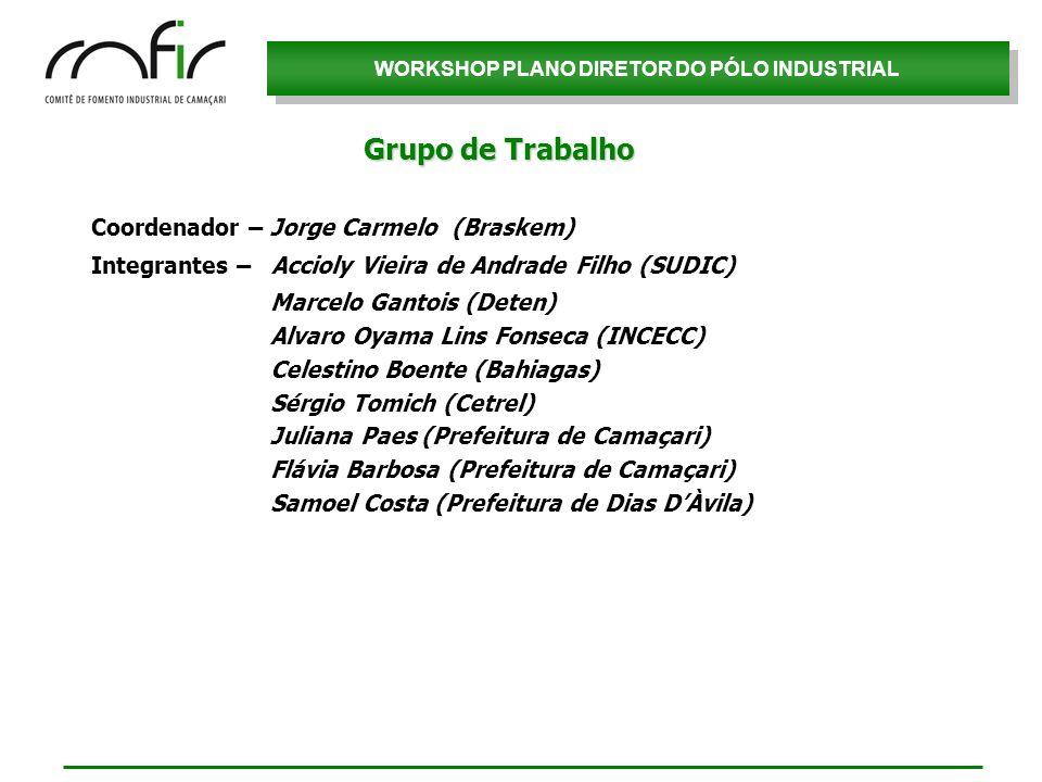 Grupo de Trabalho Coordenador – Jorge Carmelo (Braskem)