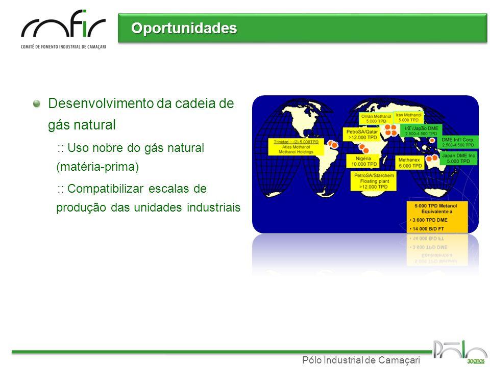 Oportunidades Desenvolvimento da cadeia de gás natural