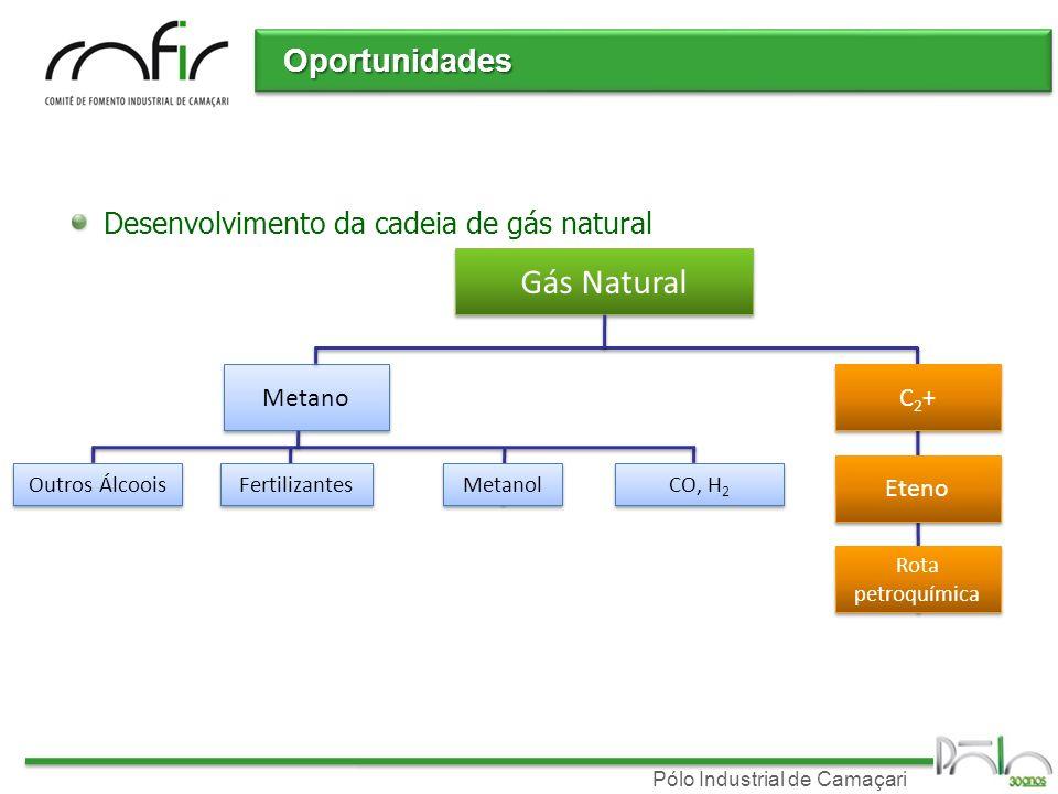Gás Natural Oportunidades Desenvolvimento da cadeia de gás natural