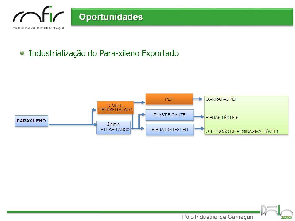 Oportunidades Industrialização do Para-xileno Exportado