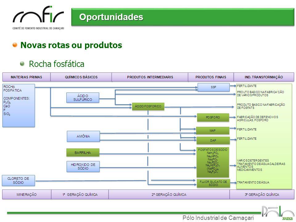 Oportunidades Novas rotas ou produtos Rocha fosfática
