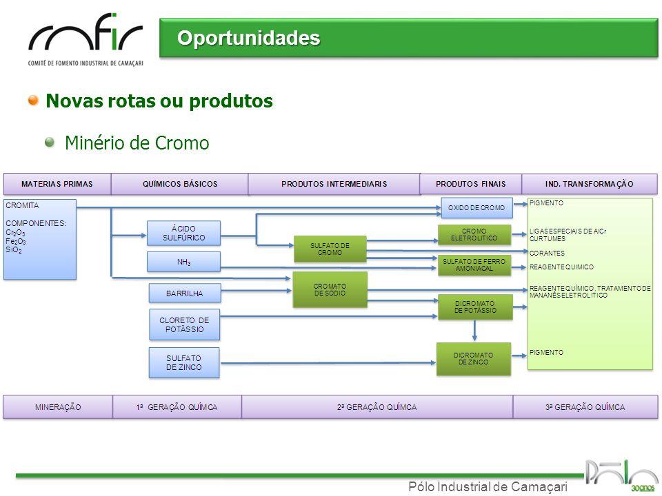 Oportunidades Novas rotas ou produtos Minério de Cromo