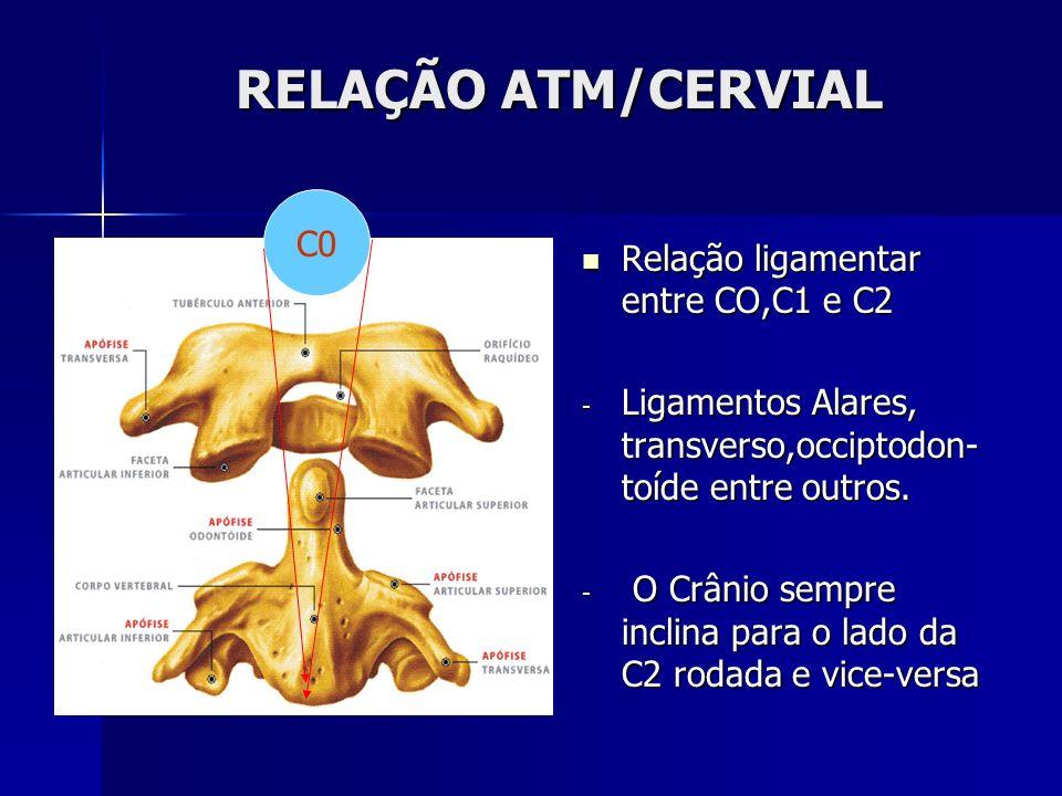 RELAÇÃO ATM/CERVIAL C0 Relação ligamentar entre CO,C1 e C2