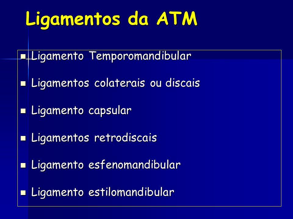 Ligamentos da ATM Ligamento Temporomandibular