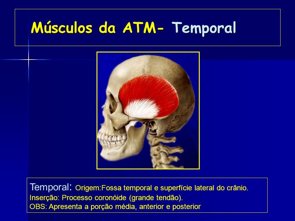 Músculos da ATM- Temporal
