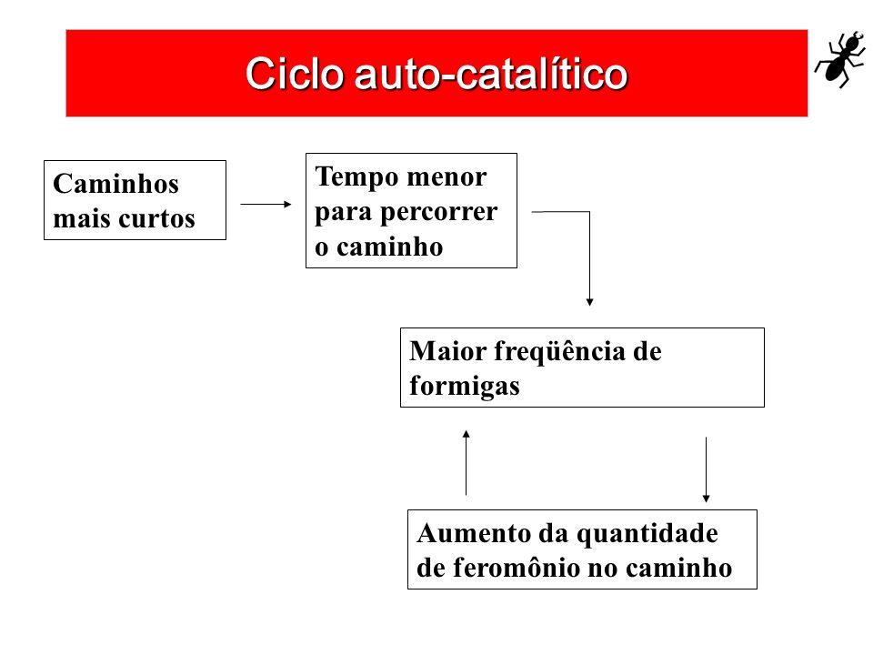 Ciclo auto-catalítico