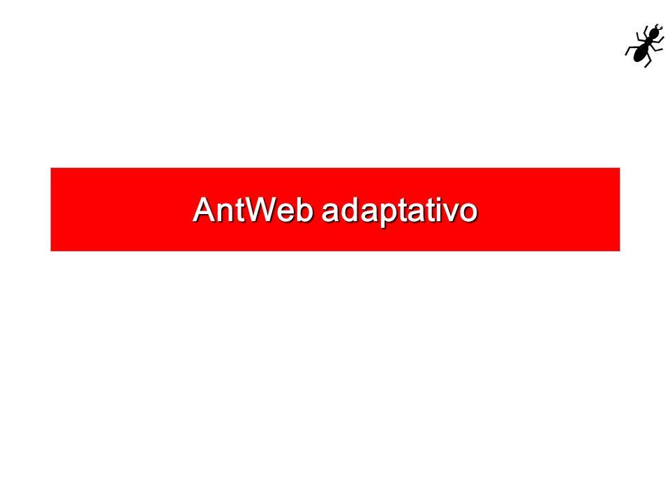 AntWeb adaptativo