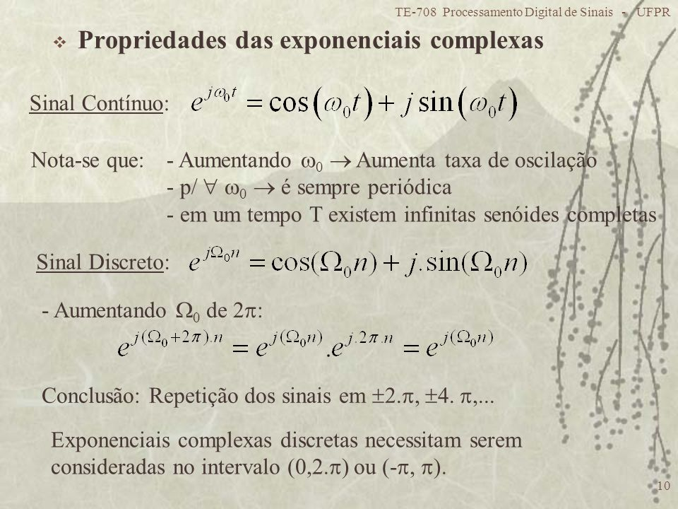 Propriedades das exponenciais complexas