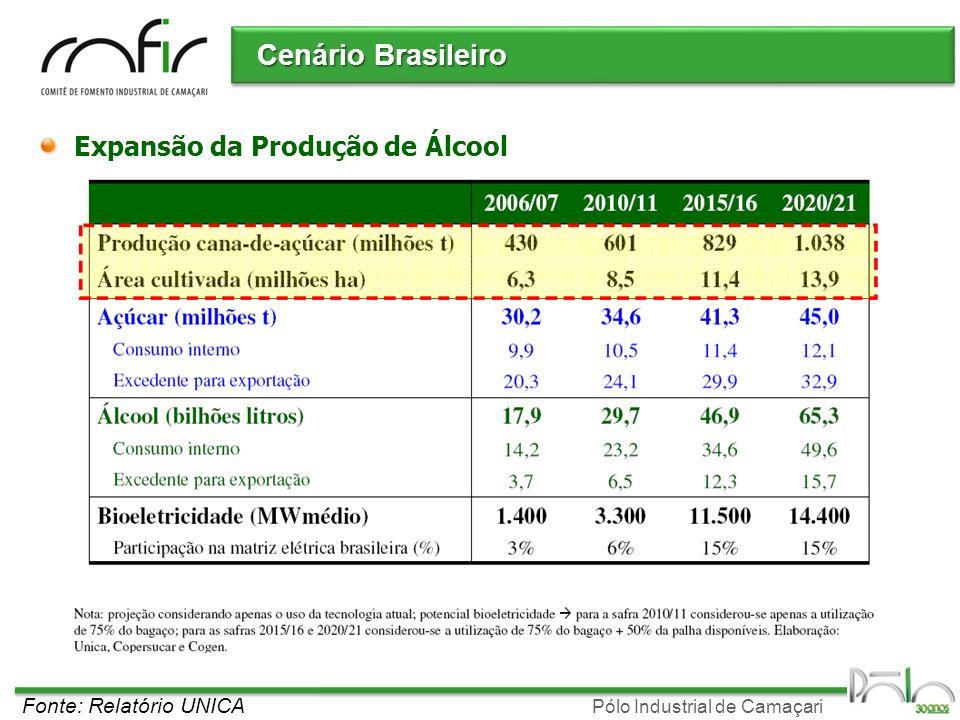 Cenário Brasileiro Expansão da Produção de Álcool
