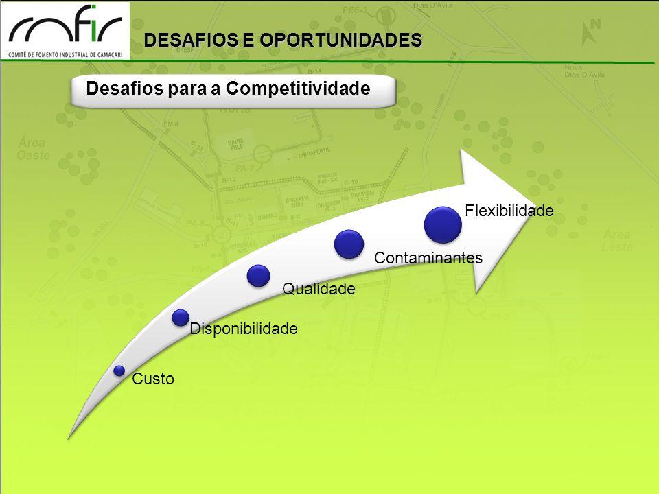 Desafios para a Competitividade