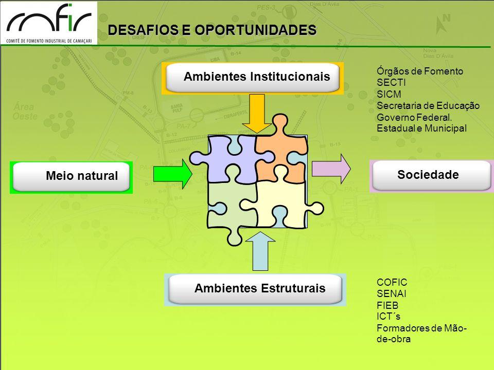 Cadeias Produtivas Ambientes Institucionais Meio natural Sociedade