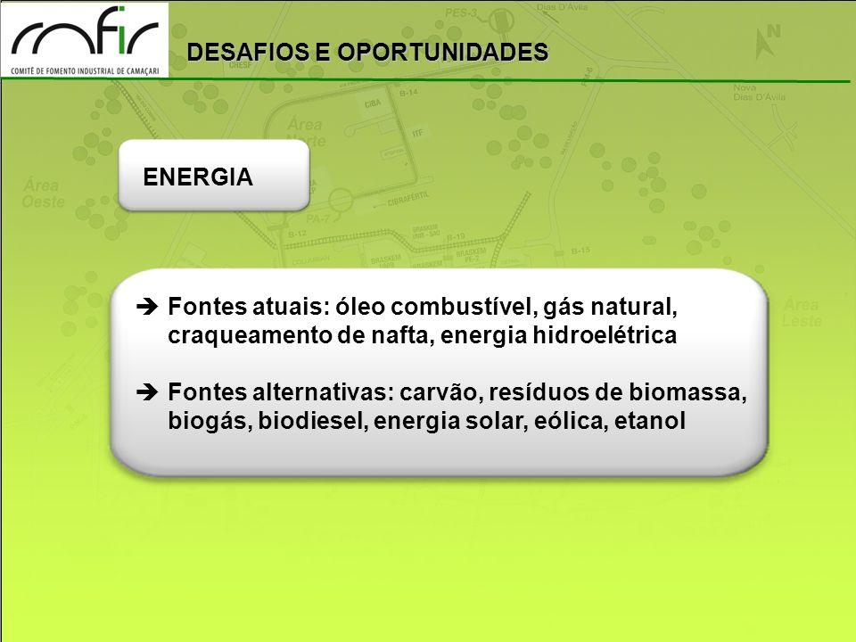 ENERGIA Fontes atuais: óleo combustível, gás natural, craqueamento de nafta, energia hidroelétrica.