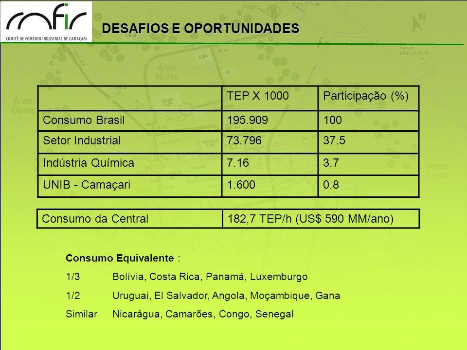 TEP X 1000 Participação (%) Consumo Brasil 195.909 100