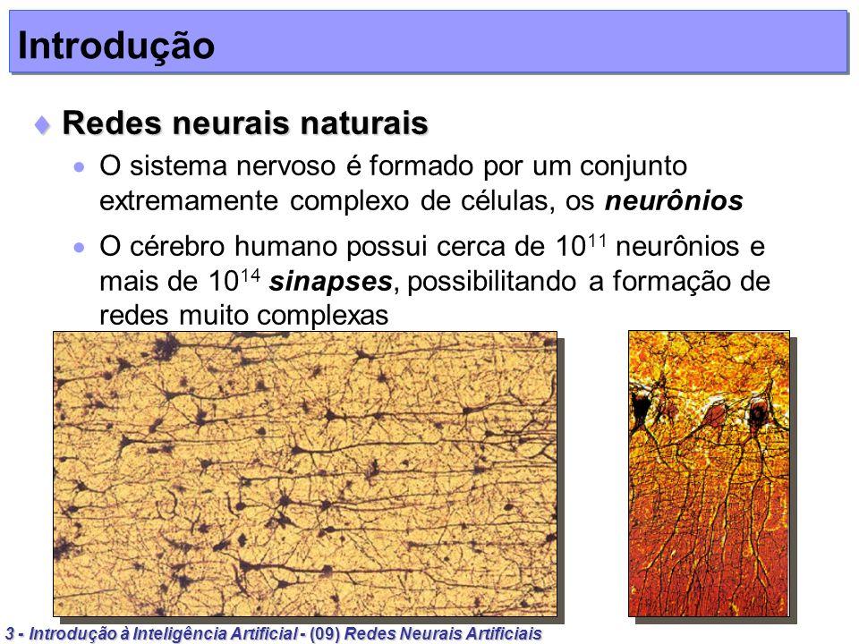 Introdução Redes neurais naturais