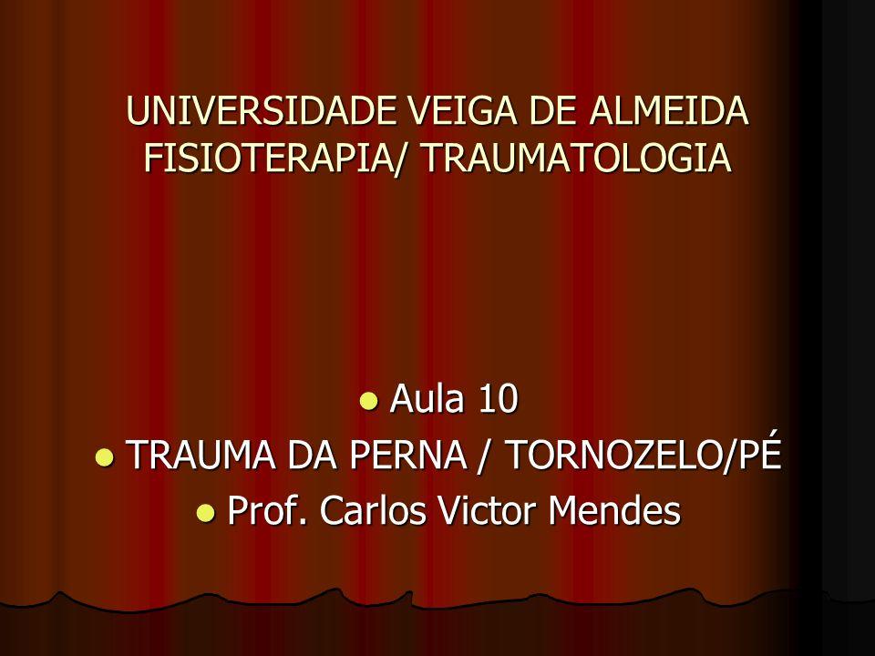 UNIVERSIDADE VEIGA DE ALMEIDA FISIOTERAPIA/ TRAUMATOLOGIA