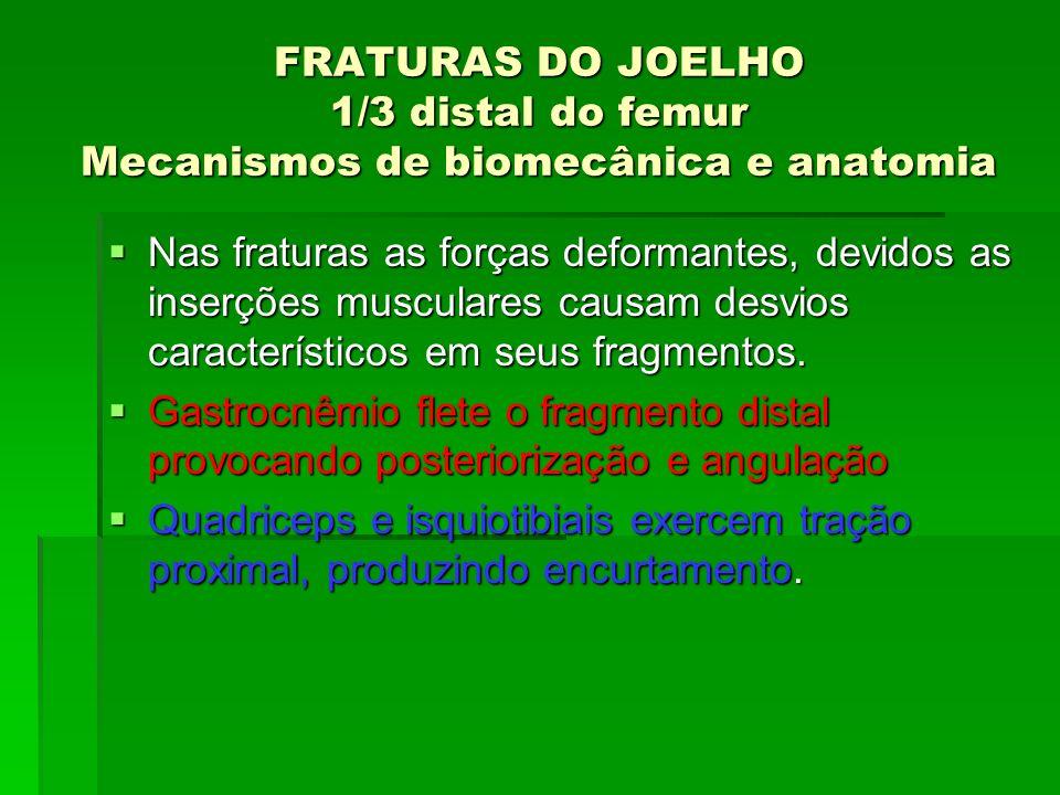 FRATURAS DO JOELHO 1/3 distal do femur Mecanismos de biomecânica e anatomia