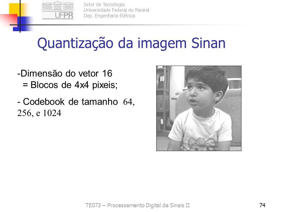 Quantização da imagem Sinan