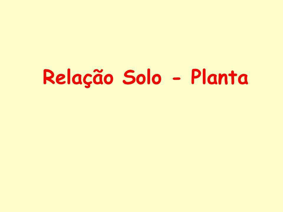 Relação Solo - Planta