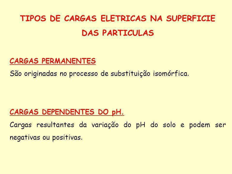 TIPOS DE CARGAS ELETRICAS NA SUPERFICIE DAS PARTICULAS