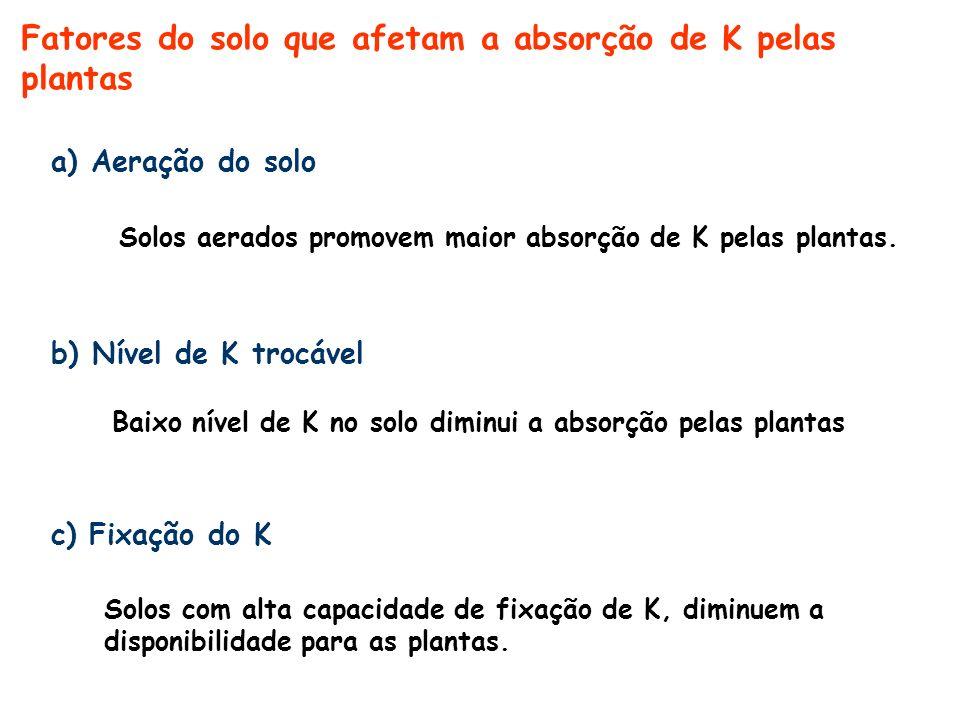 Fatores do solo que afetam a absorção de K pelas plantas