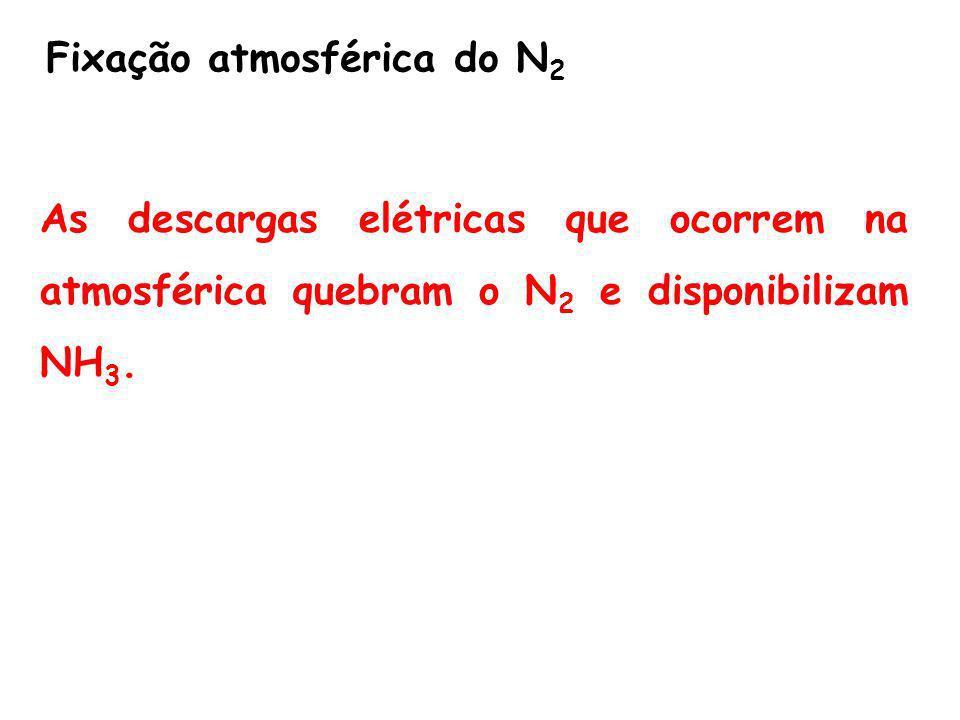Fixação atmosférica do N2