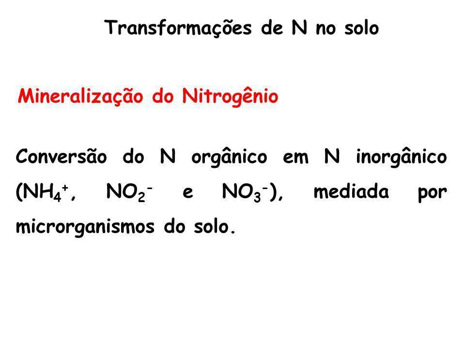 Transformações de N no solo
