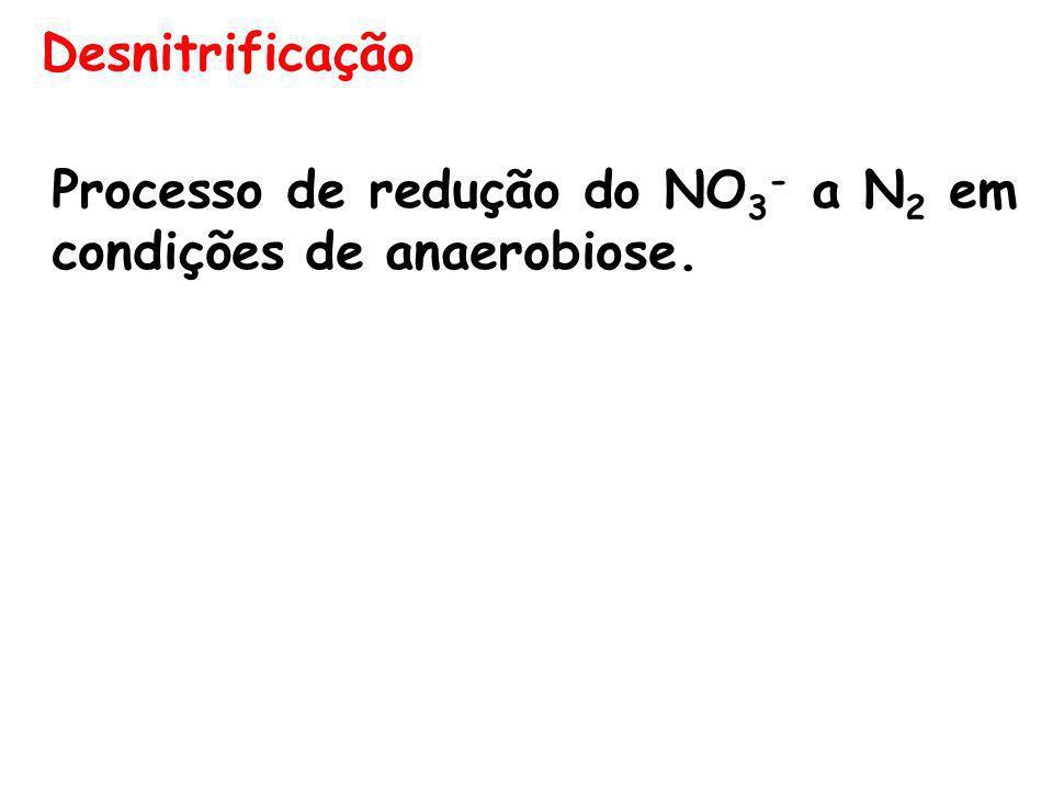 Desnitrificação Processo de redução do NO3- a N2 em condições de anaerobiose.