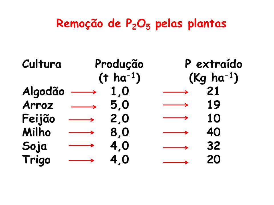 Remoção de P2O5 pelas plantas