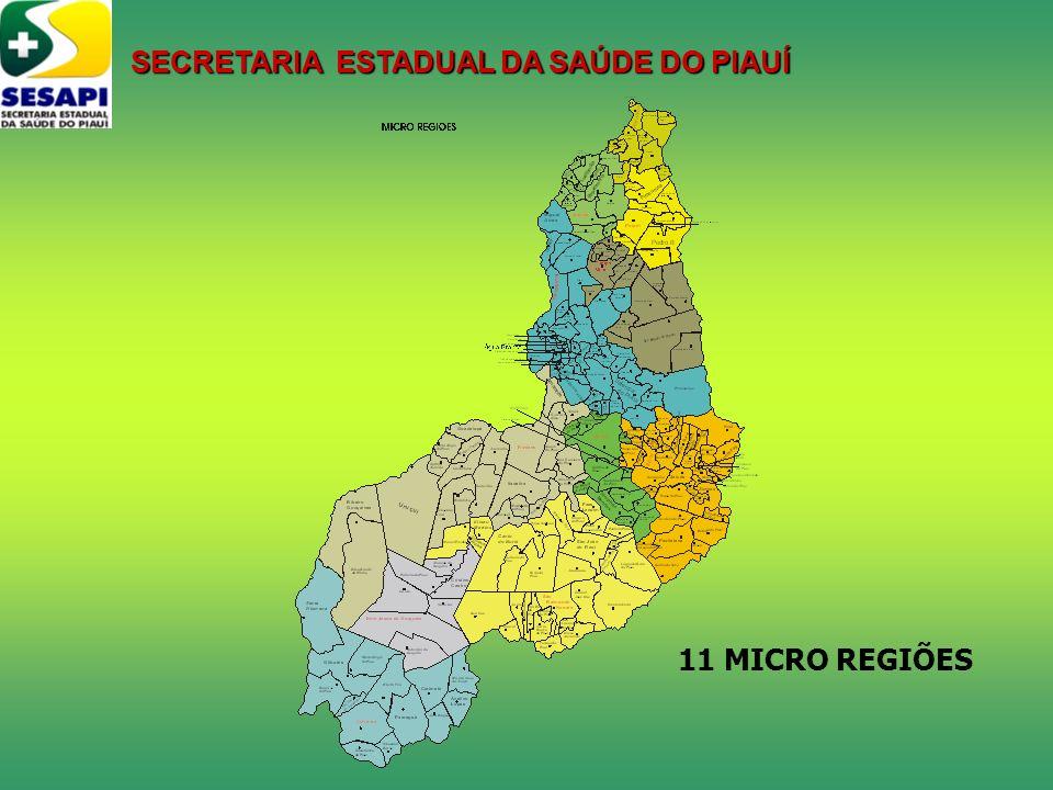SECRETARIA ESTADUAL DA SAÚDE DO PIAUÍ