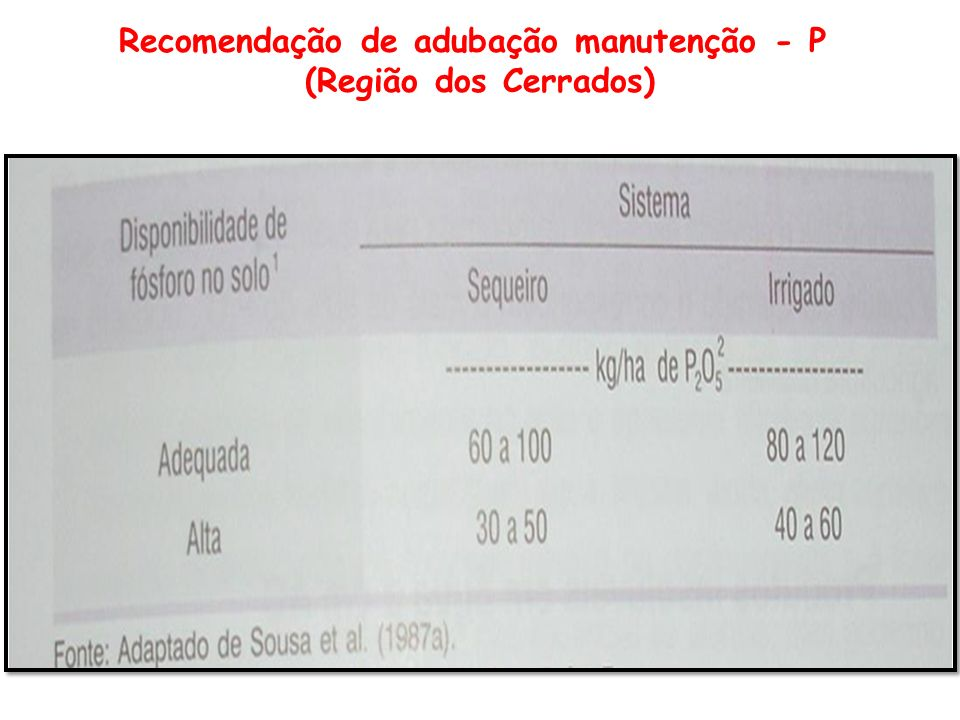 Recomendação de adubação manutenção - P