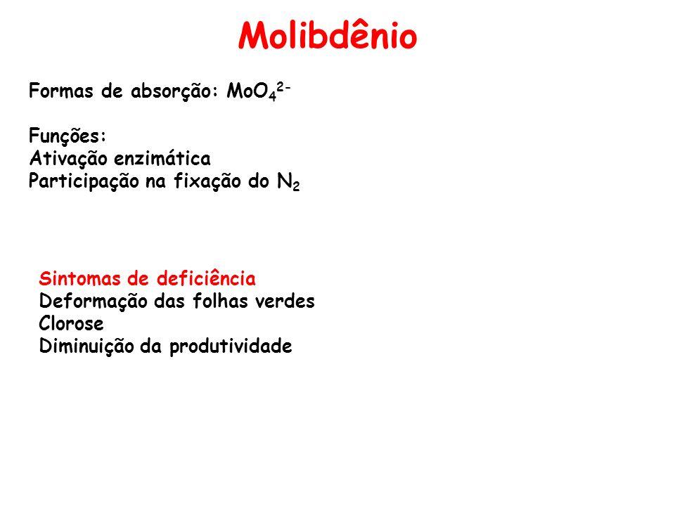 Molibdênio Formas de absorção: MoO42- Funções: Ativação enzimática