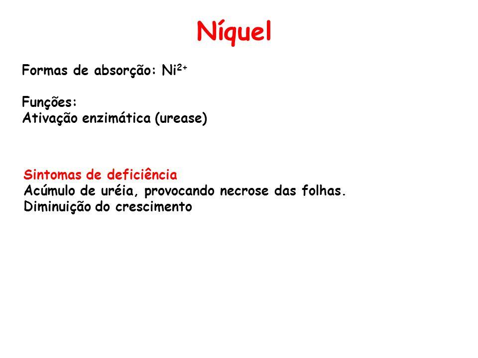 Níquel Formas de absorção: Ni2+ Funções: Ativação enzimática (urease)