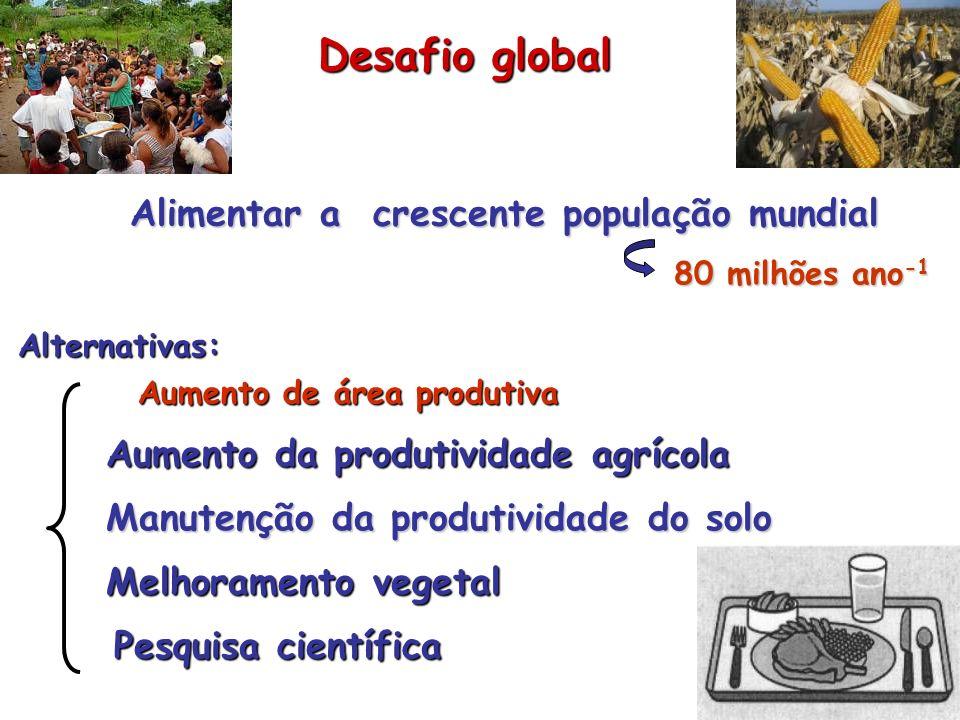 Desafio global Alimentar a crescente população mundial