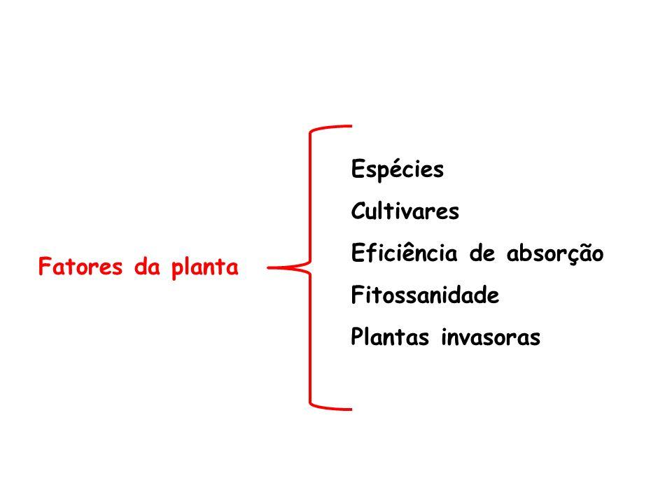 Espécies Cultivares Eficiência de absorção Fitossanidade Plantas invasoras Fatores da planta