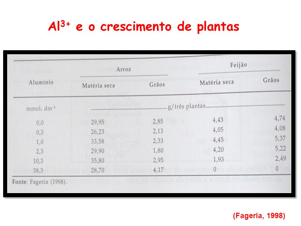 Al3+ e o crescimento de plantas