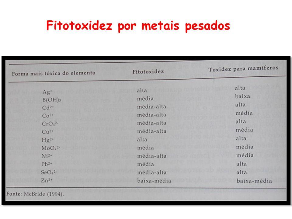 Fitotoxidez por metais pesados