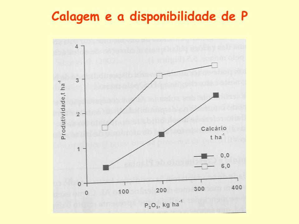 Calagem e a disponibilidade de P