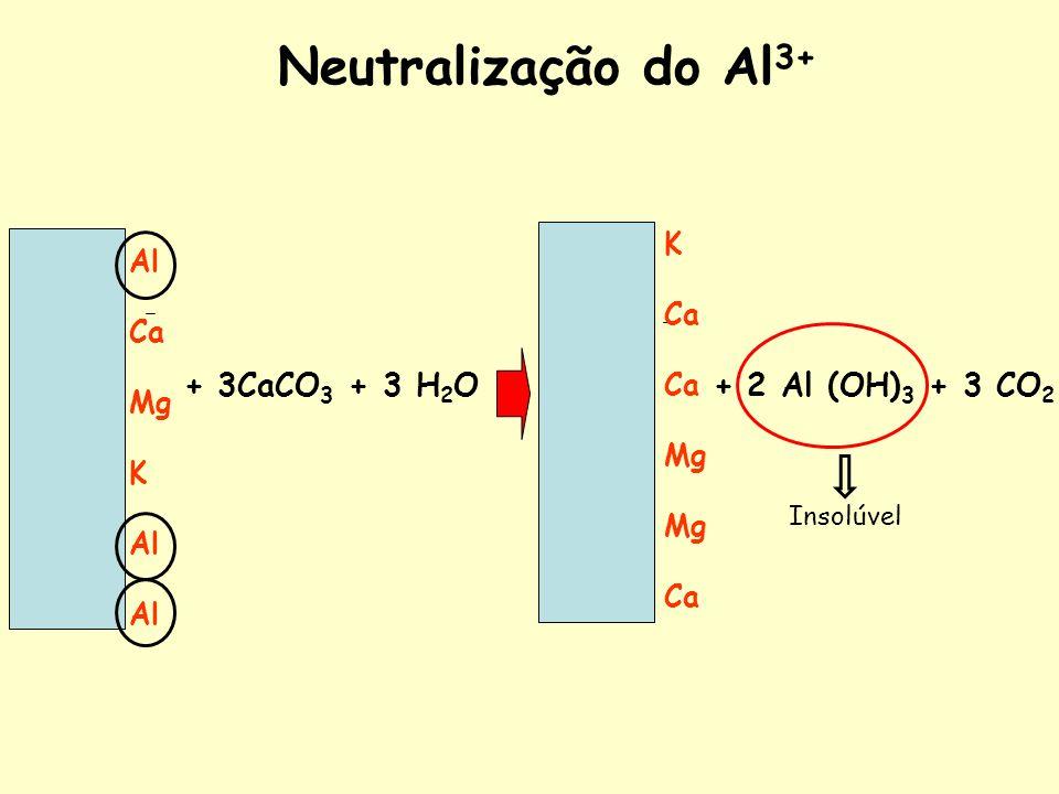 Neutralização do Al3+ + 3CaCO3 + 3 H2O + 2 Al (OH)3 + 3 CO2 K Al Ca Ca