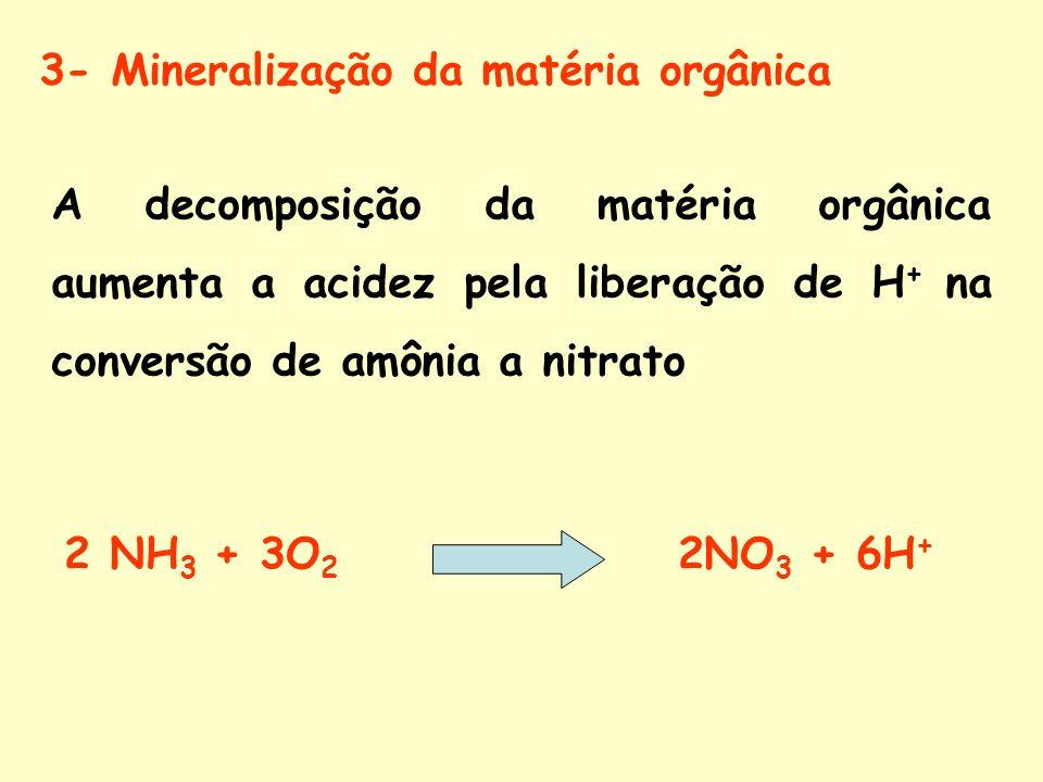 3- Mineralização da matéria orgânica