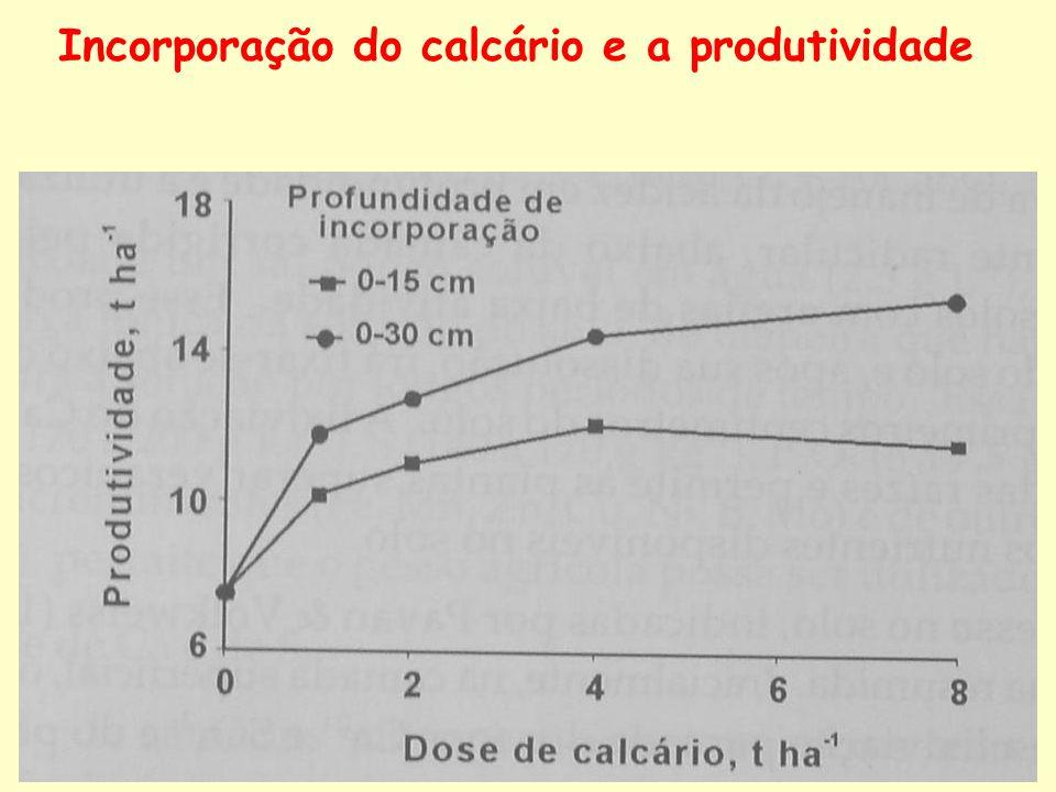 Incorporação do calcário e a produtividade