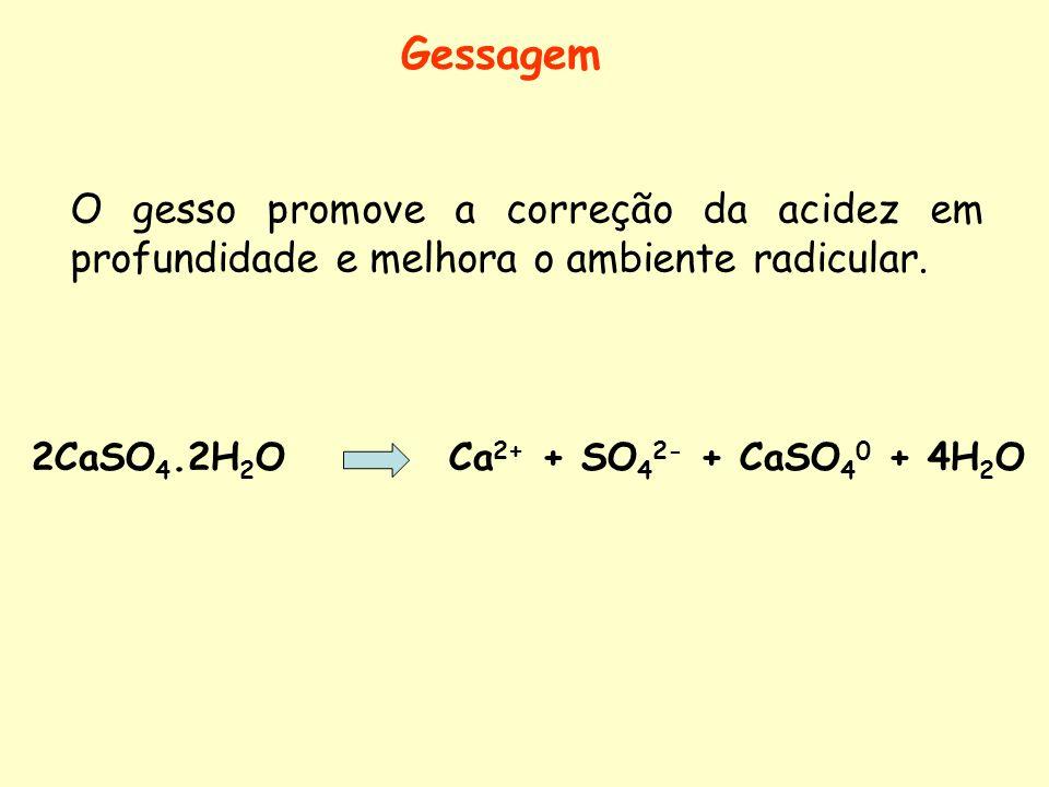 Gessagem O gesso promove a correção da acidez em profundidade e melhora o ambiente radicular.