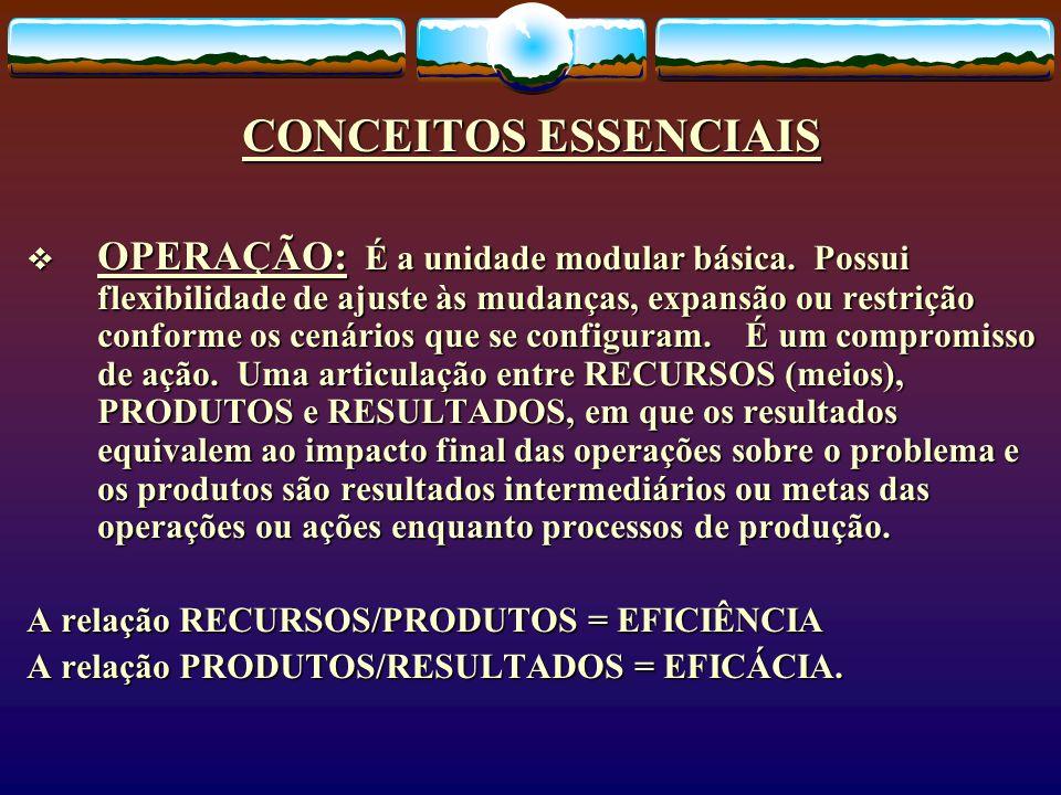 CONCEITOS ESSENCIAIS