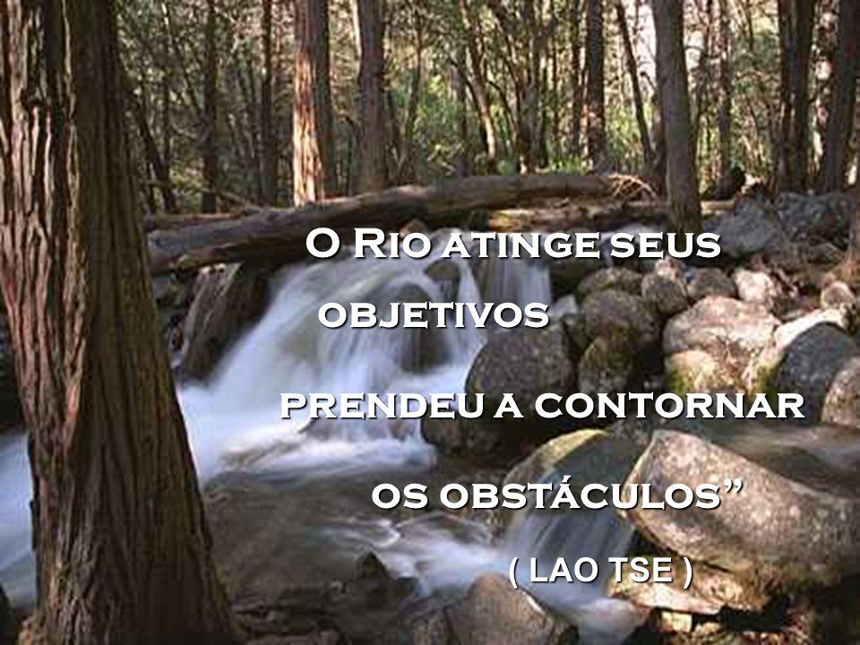 O Rio atinge seus objetivos